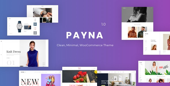 Payna Preview